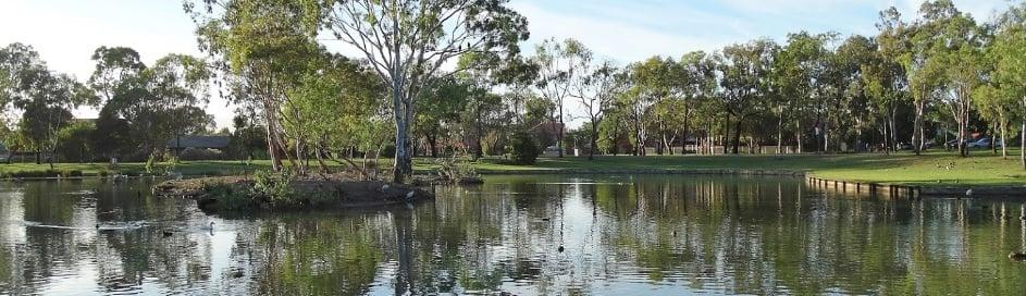 0106_WETL_PAE_Roy Amer Wetlands_02
