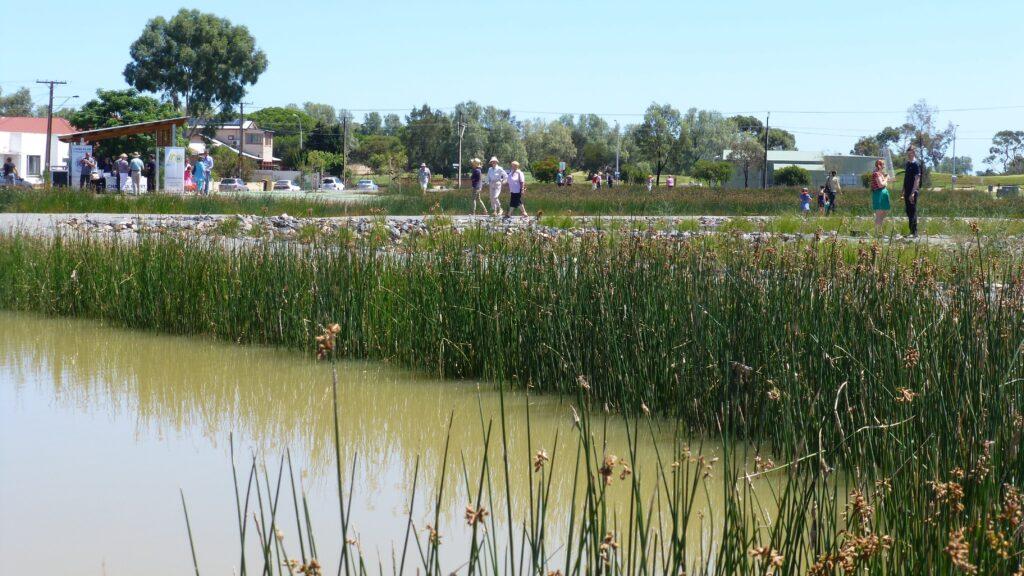 water sensitive sacooke reserve wetlands  royal park