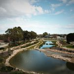 Wetland and detention basin near Hampstead Road, Lightsview. Image: DesignFlow