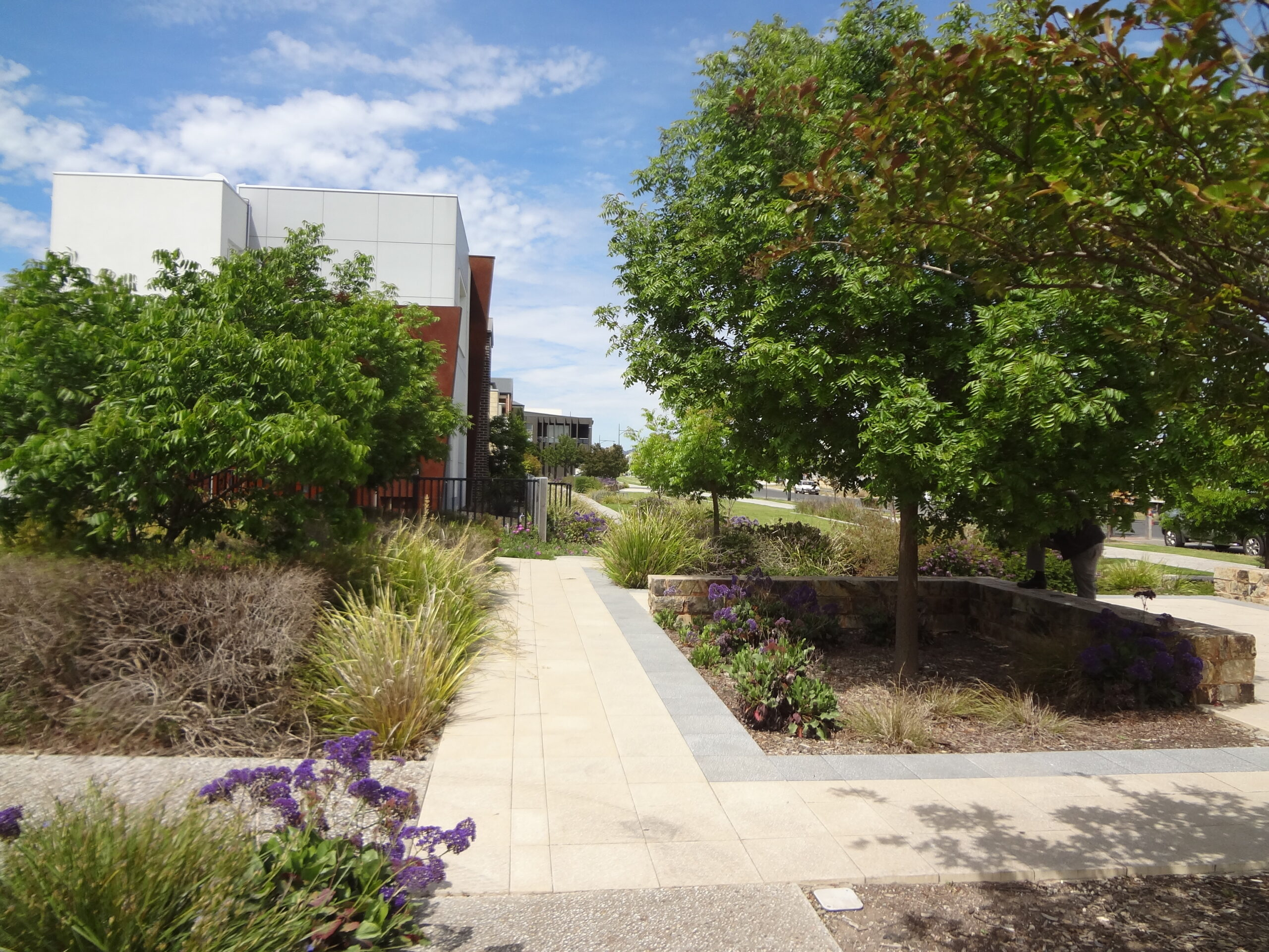 Parkway, Lightsview - stormwater harvesting and re-use