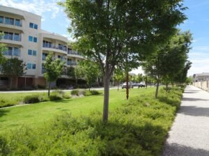 City View Boulevard, Lightsview - stormwater harvesting and re-use