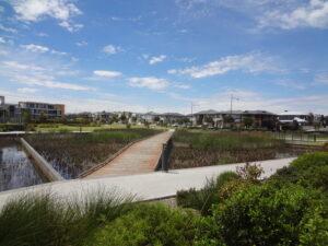 Waterford Circuit, Lightsview - wetland