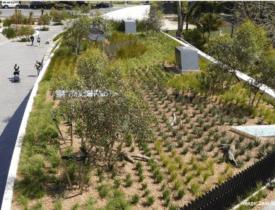 Adelaide Zoo green roof. Image: Zoos SA