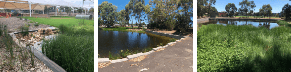 Stormwater SA Execellence Awards 2020 | Category 6 Winner - Kings Reserve Wetland