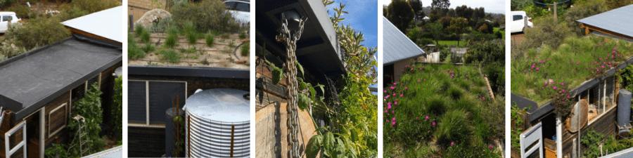 DIY green roof, Aldinga.  Images: Sam Ryan, Folk of all Trades