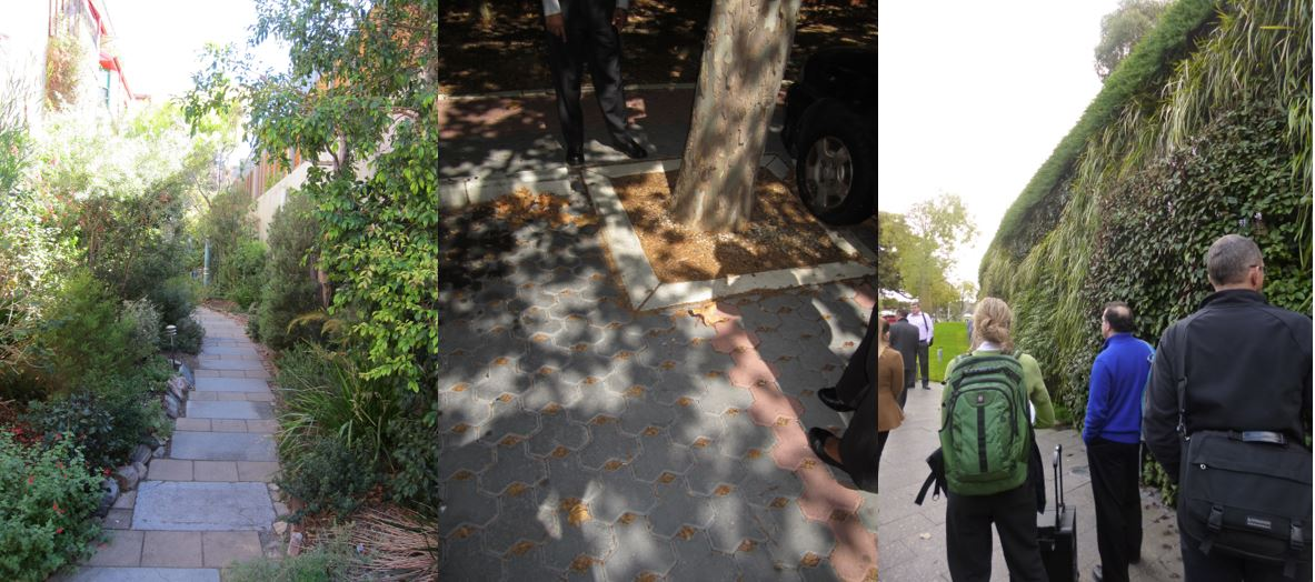 L-R Christie Walk, Old Treasury Lane - Source: Baden Myers; Adelaide Zoo's green wall - Source: Water Sensitive SA