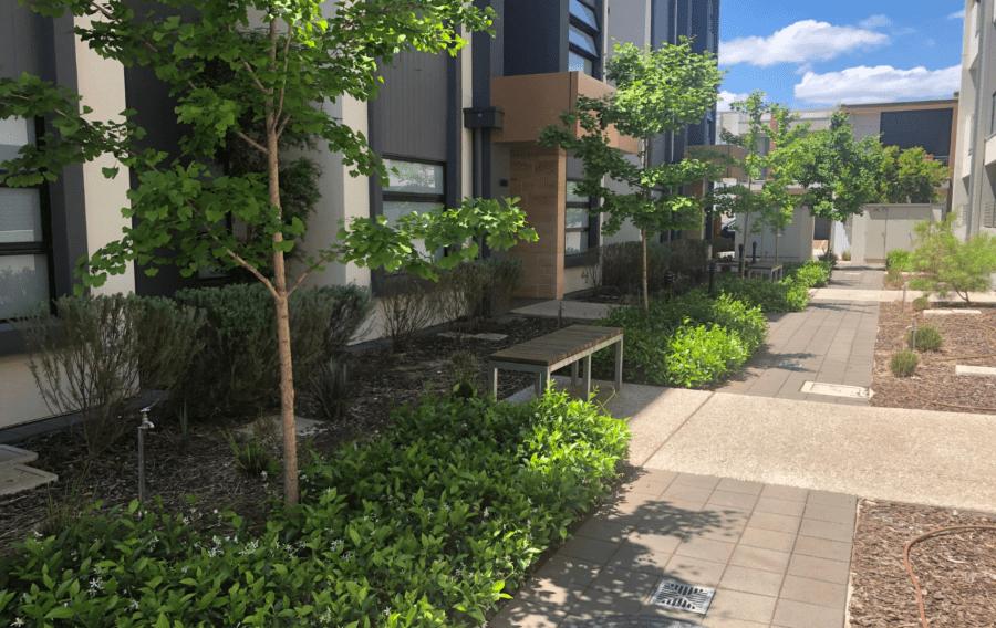 Marden Connect, 1 & 3 Alexander Land central garden