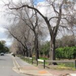 Randolph Avenue, Fullartonraingarden - prior to construction. Source: City of Unley