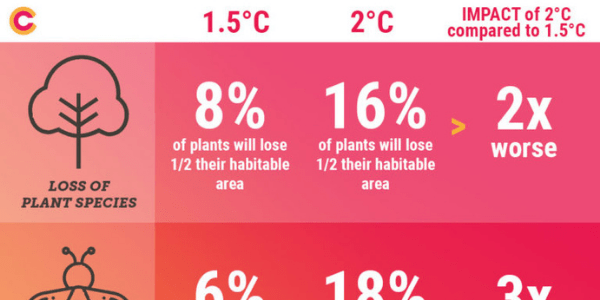 The difference between 1.5 and 2 degrees warming - infographic. Source Climate Council